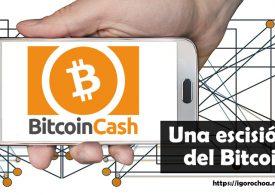 Bitcoin Cash, la criptomoneda que se emancipó de bitcoin