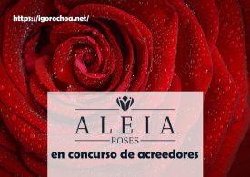 Aleia Roses: Concurso de acreedores para esta empresa soriana