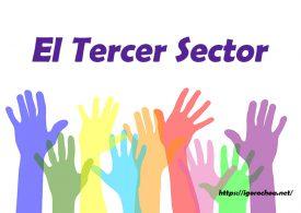 Qué es el Tercer Sector. Economía social y solidaria